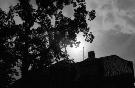 Ein Baum, ein Haus